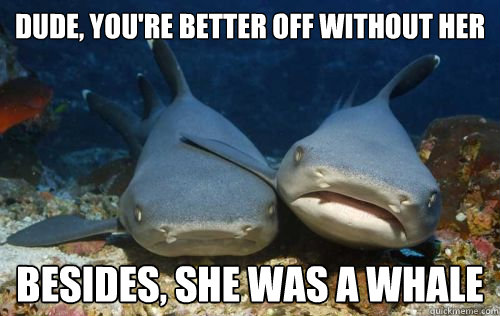 dude youre better off without her besides she was a whale - Compassionate Shark Friend