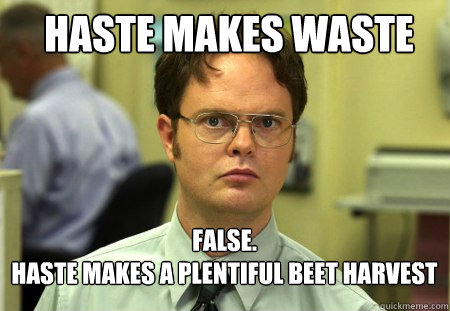 haste makes waste false haste makes a plentiful beet harv - Schrute