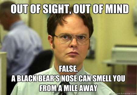 out of sight out of mind false a black bears nose can s - Schrute