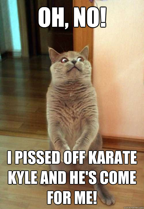 oh no i pissed off karate kyle and hes come for me - Horrorcat