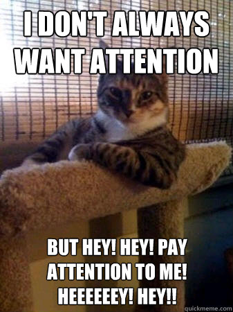 ATTENTION CAT