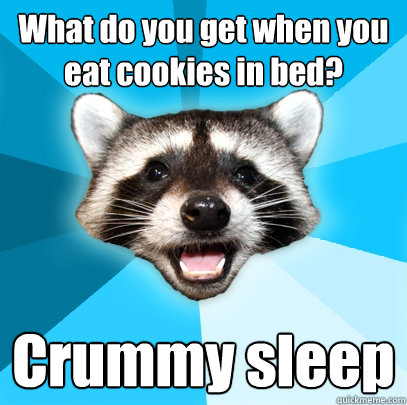 what do you get when you eat cookies in bed crummy sleep - Lame Pun Coon