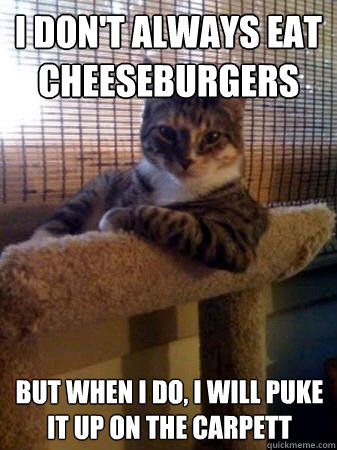 i dont always eat cheeseburgers but when i do i will puke  - The Most Interesting Cat in the World