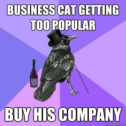 business cat getting too popular buy his company - Rich Raven