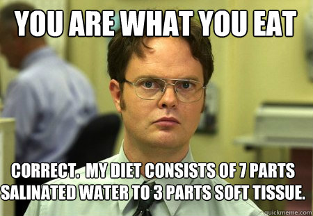 you are what you eat correct my diet consists of 7 parts s - Schrute
