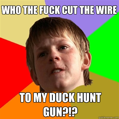 who the fuck cut the wire to my duck hunt gun - Angry School Boy
