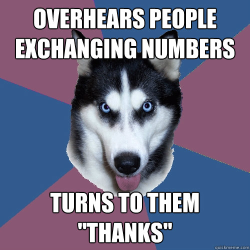 overhears people exchanging numbers turns to them thanks - Creeper Canine