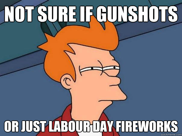 not sure if gunshots or just labour day fireworks - Futurama Fry