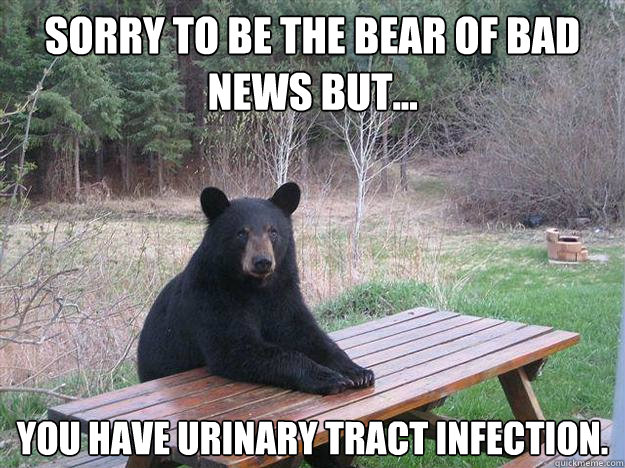 sorry to be the bear of bad news but you have urinary tra - Bear of Bad News