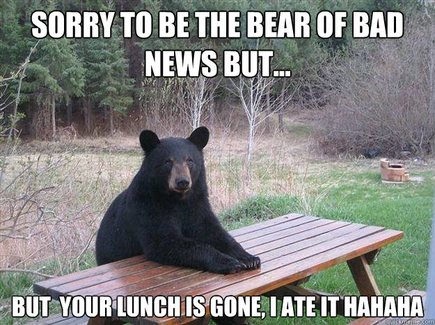 sorry to be the bear of bad news but but your lunch is g - Bear of Bad News