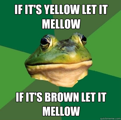 if its yellow let it mellow if its brown let it mellow - Foul Bachelor Frog