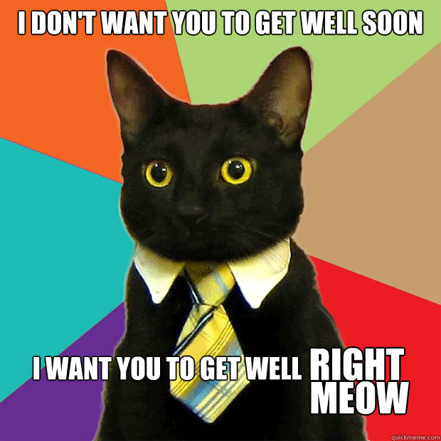 Business Cat - i dont want you to get well soon i want you to get well ...