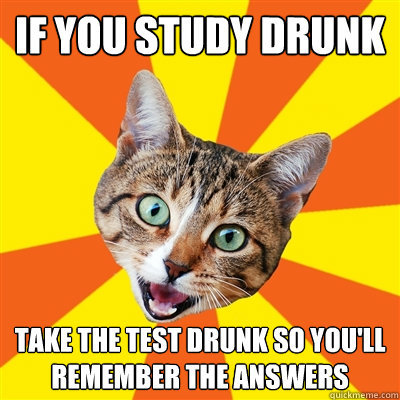 if you study drunk take the test drunk so youll remember th - Bad Advice Cat