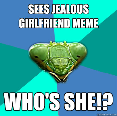 sees jealous girlfriend meme whos she - Crazy Girlfriend Praying Mantis
