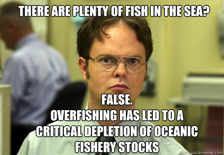 there are plenty of fish in the sea false overfishing has  - Schrute