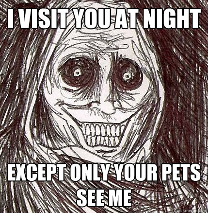 i visit you at night except only your pets see me - Horrifying Houseguest