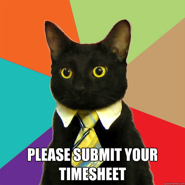 please submit your timesheet - Business Cat