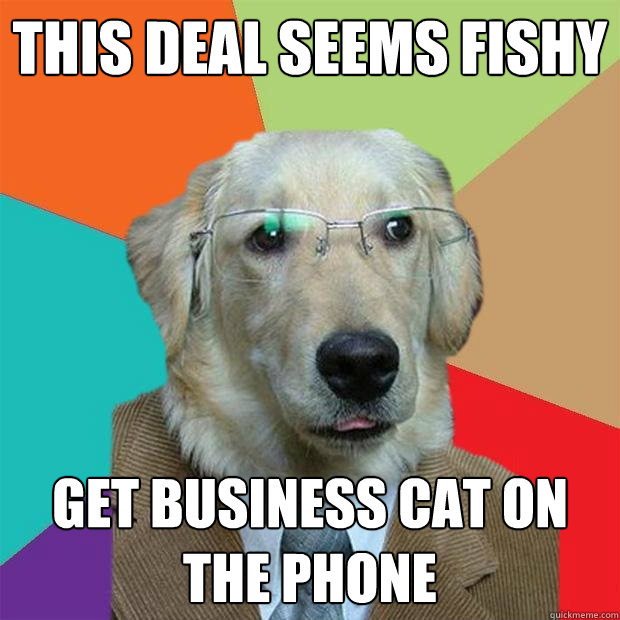 this deal seems fishy get business cat on the phone - Business Dog