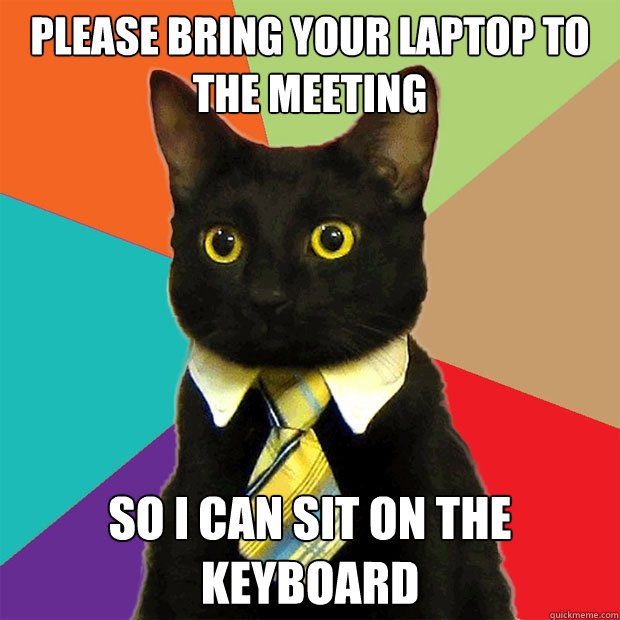 please bring your laptop to the meeting so i can sit on the  - Business Cat