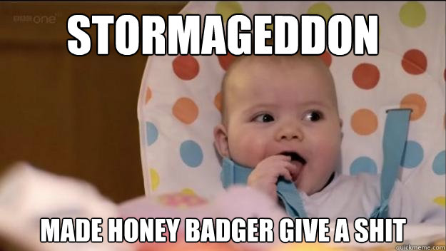 stormageddon made honey badger give a shit - Stormageddon- Dark Lord of All