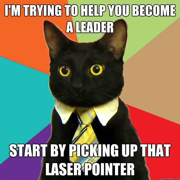 im trying to help you become a leader start by picking up t - Business Cat