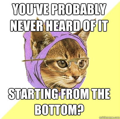 youve probably never heard of it starting from the bottom - Hipster Kitty