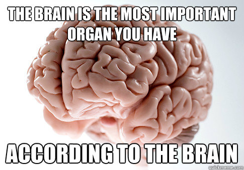 the brain is the most important organ you have according to  - Scumbag Brain