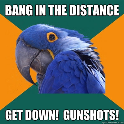 bang in the distance get down gunshots - Paranoid Parrot