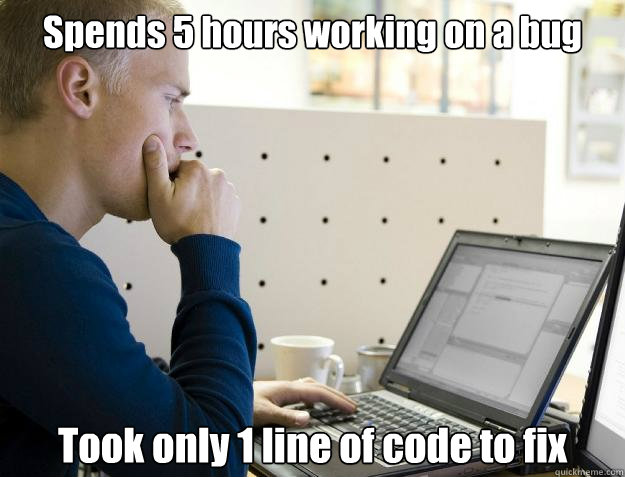 spends 5 hours working on a bug took only 1 line of code to  - Programmer