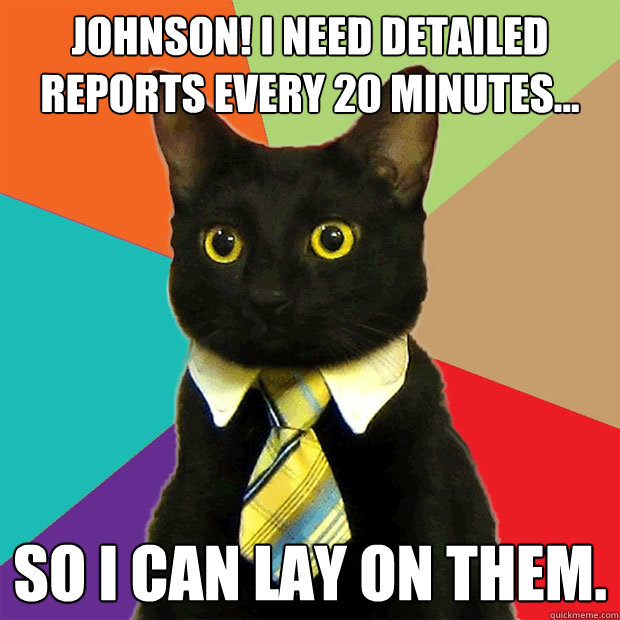 johnson i need detailed reports every 20 minutes so i ca - Business Cat