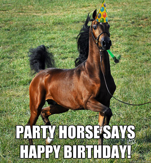 Party Horse Says Happy Birthday Party Horse Quickmeme