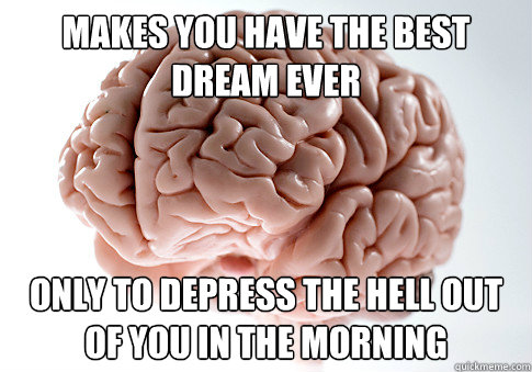 makes you have the best dream ever only to depress the hell  - Scumbag Brain