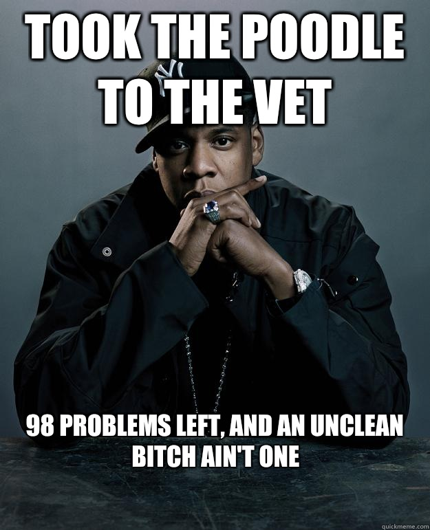Took the poodle to the vet 98 problems left and an unclean b - Jay Z Problems