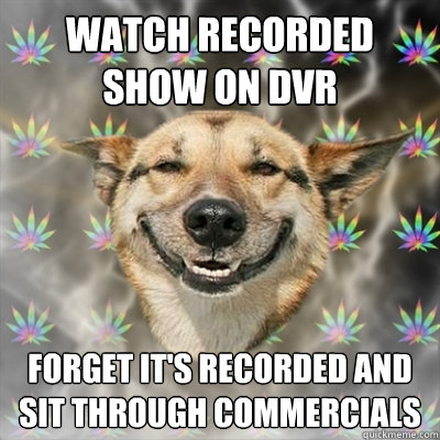 watch recorded show on dvr forget its recorded and sit thro - Stoner Dog