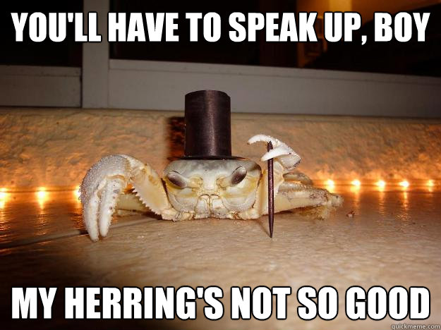 youll have to speak up boy my herrings not so good - Fancy Crab