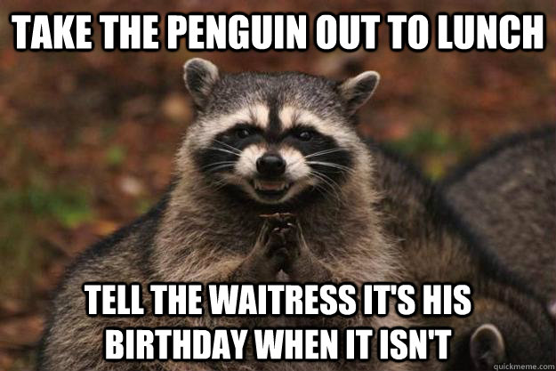 take the penguin out to lunch tell the waitress its his bir - Evil Plotting Raccoon