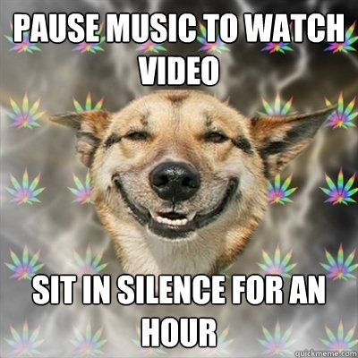 pause music to watch video sit in silence for an hour - Stoner Dog