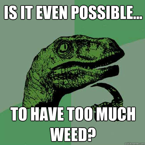 is it even possible to have too much weed - Philosoraptor