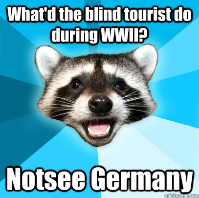 whatd the blind tourist do during wwii notsee germany - Lame Pun Coon