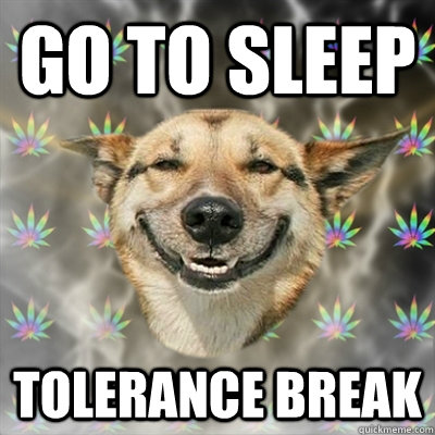 go to sleep tolerance break - Stoner Dog