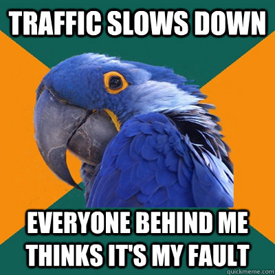 traffic slows down everyone behind me thinks its my fault - Paranoid Parrot