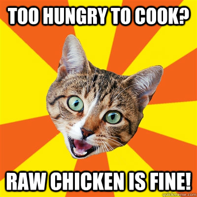too hungry to cook raw chicken is fine - Bad Advice Cat