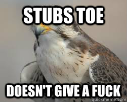 stubs toe doesnt give a fuck - Fearless Falcon