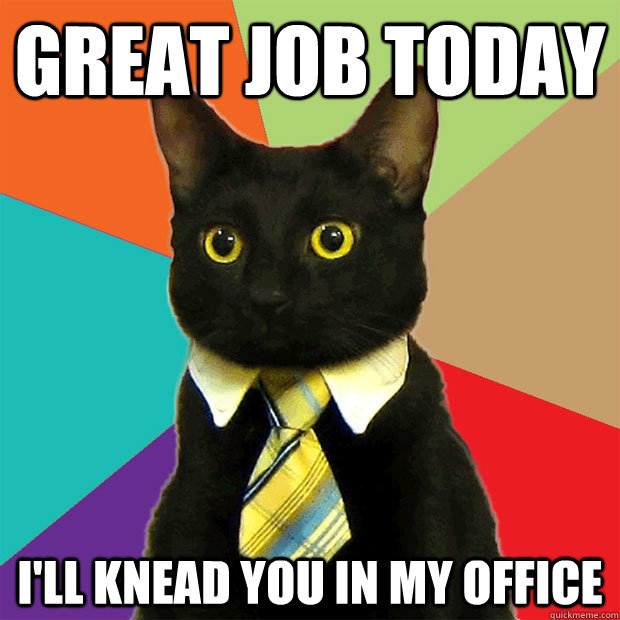 great job today ill knead you in my office - Business Cat