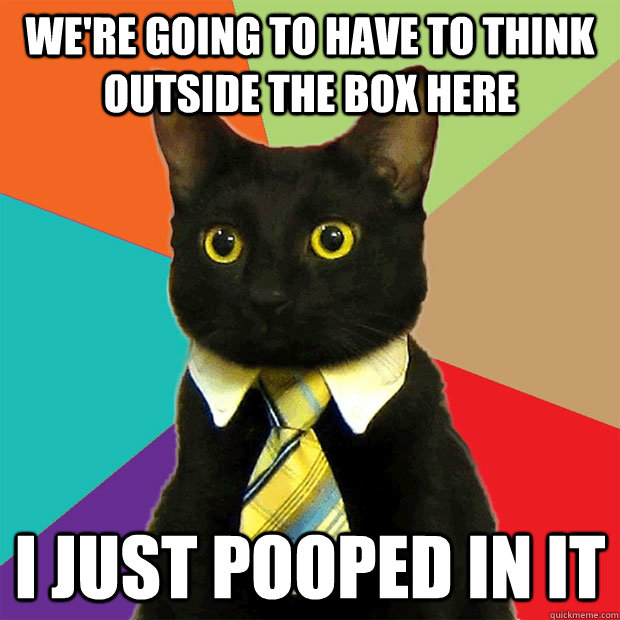 were going to have to think outside the box here i just poo - Business Cat