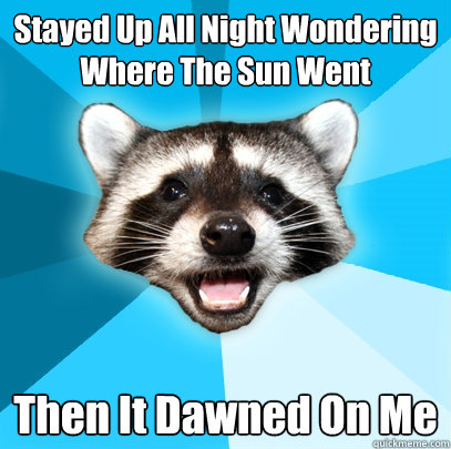 stayed up all night wondering where the sun went then it daw - Lame Pun Coon