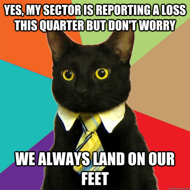 yes my sector is reporting a loss this quarter but dont wo - Business Cat
