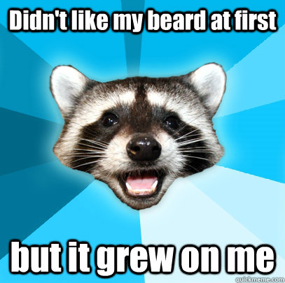 didnt like my beard at first but it grew on me - Lame Pun Coon