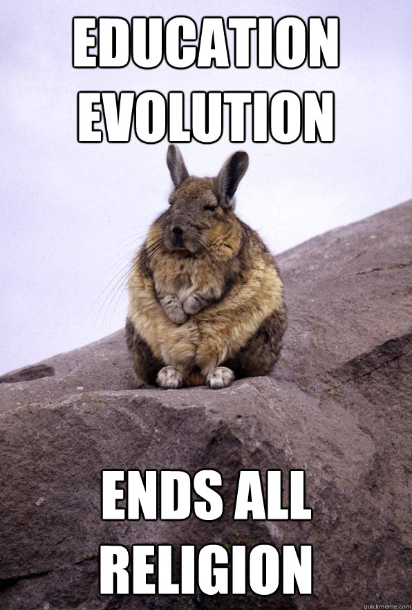 education evolution ends all religion - Wise Wondering Viscacha