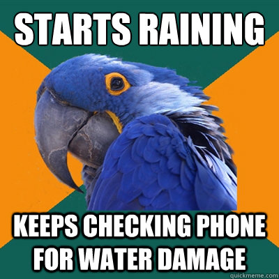 starts raining keeps checking phone for water damage  - Paranoid Parrot